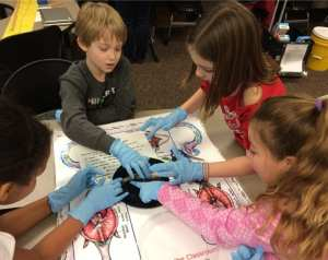 In-Class hands-on activities