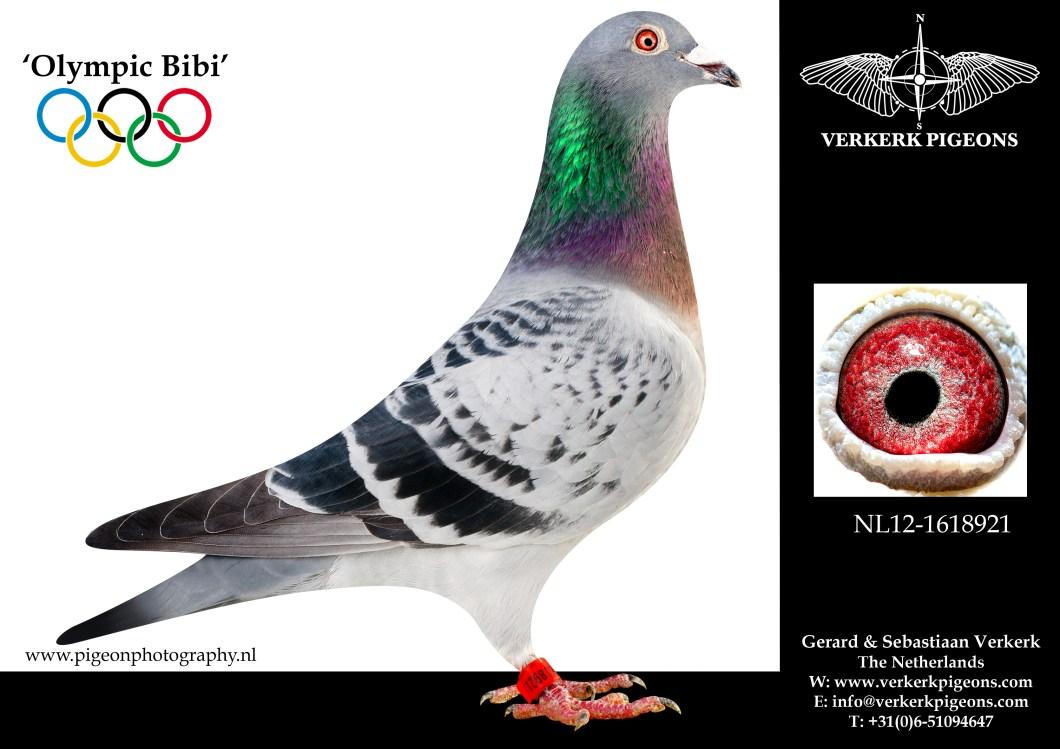VerkerkNL12-1618921
