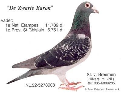 http://www.stevenvanbreemen.nl/images/historie8.8.4-7839_zwartebaron.jpg