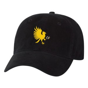 Eagles adjustable hat