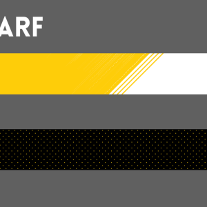 The Columbus Eagles' official 2019 scarf
