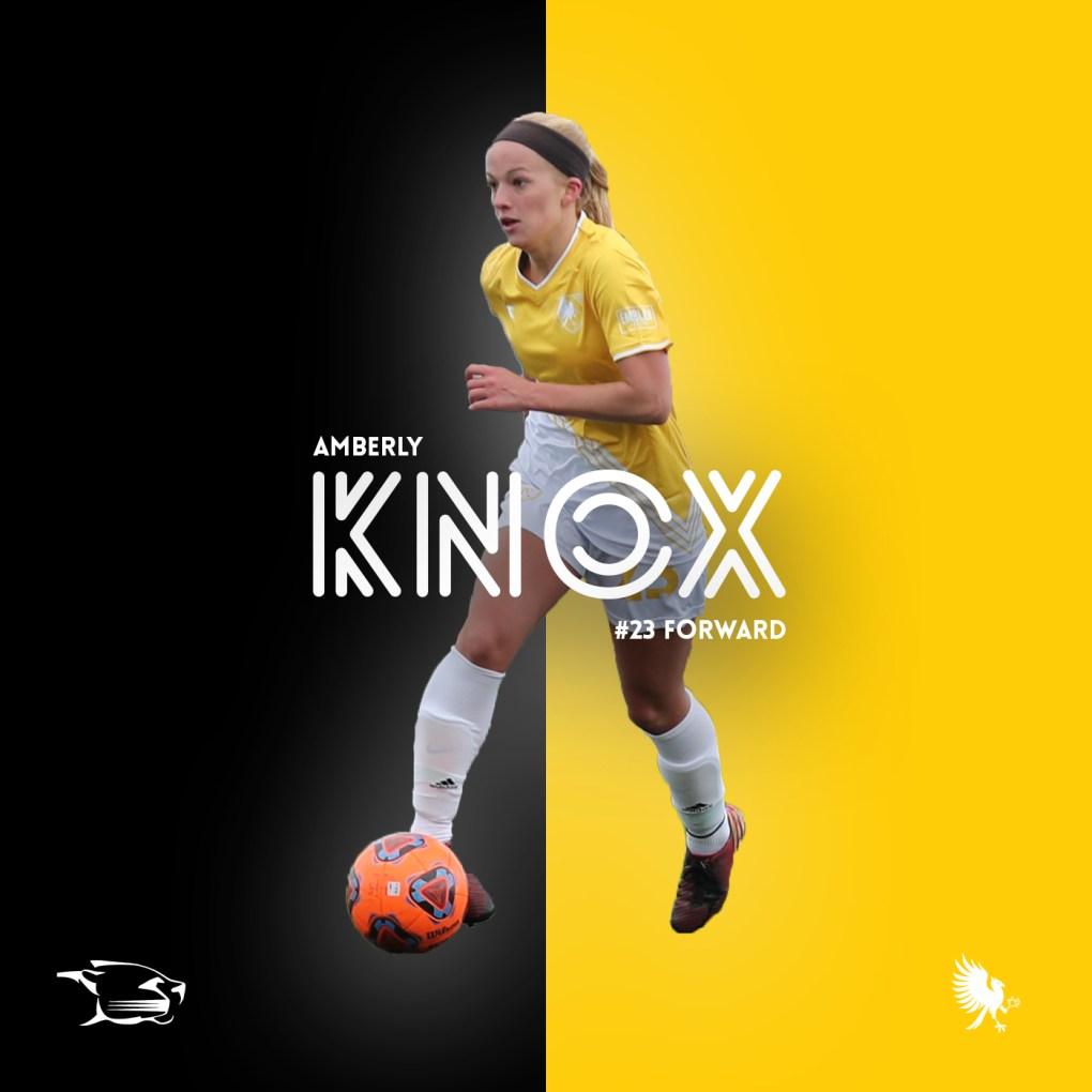 Amberly Knox