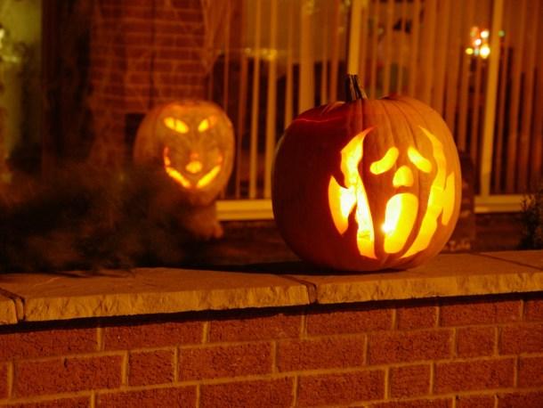 pumpkin,fall date ideas in Columbus