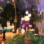 Franklin Park Conservatory Wedding Showcase