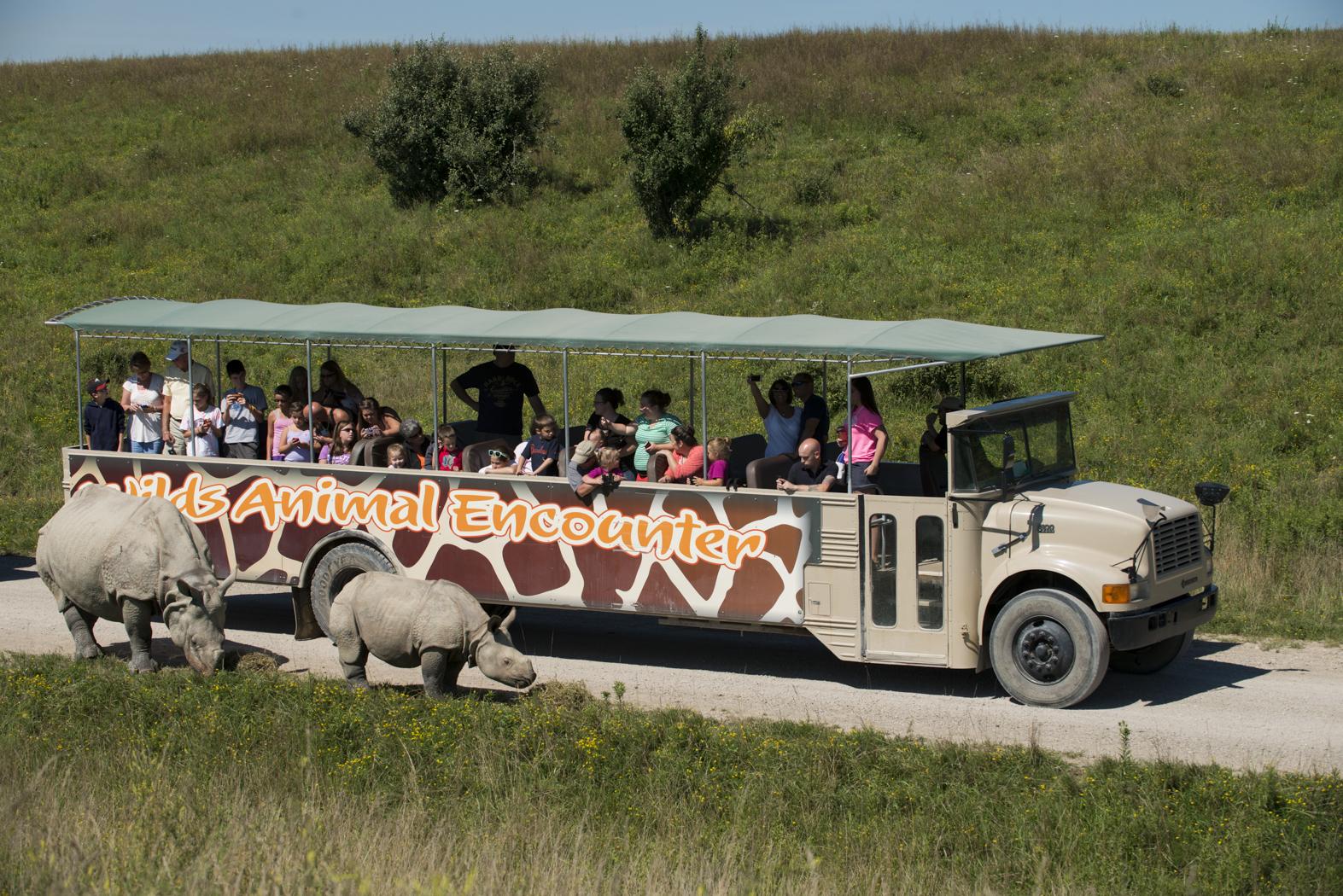 Safari In Ohio >> Safari In Ohio Take A Wilds Tour