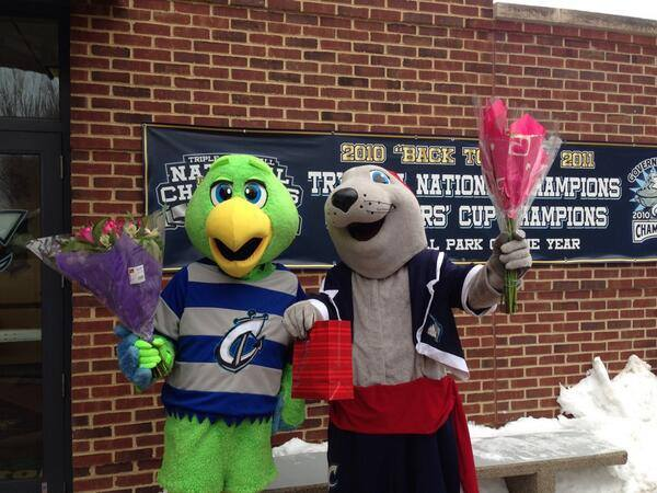 Columbus Clippers Krash and LouSeal, Valentine's Day in Columbus