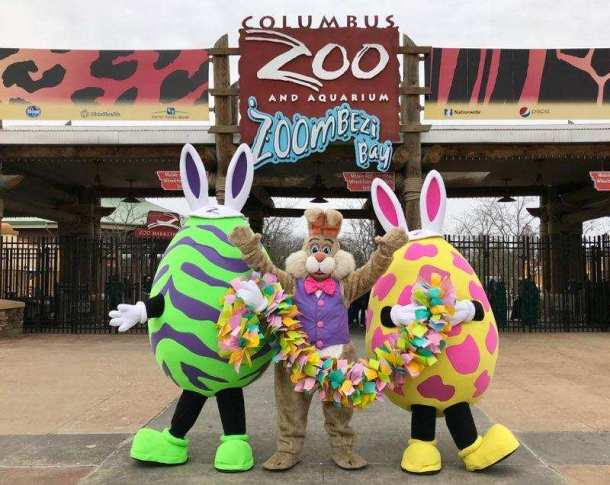 baf8a6211 Easter Bunny Romp and Pancake Breakfast at Hills Market Worthington Hills   April 20 at noon. Come early for the  5 pancake breakfast that starts at 8  am