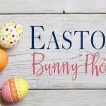 Easter Easton Bunny Photos at Easton