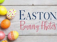 easton bunny