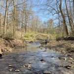 New parks added! Best places for Creeking in Columbus