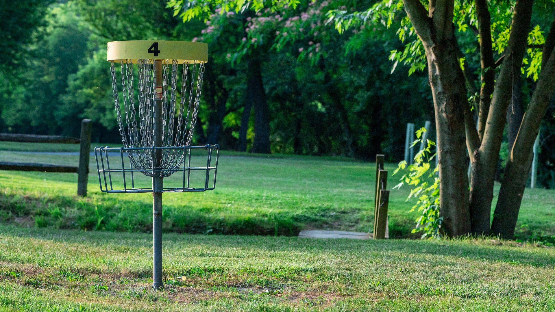 Get Started With Disc Golf In Columbus At These Great Courses