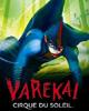 Cirque du Soleil - Vareka