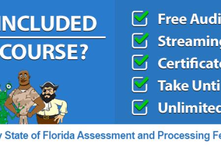 Free Professional Resume » driving school certificate insurance ...