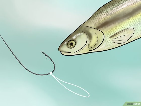 Immagine titolata Bait a Fishing Hook Step 20