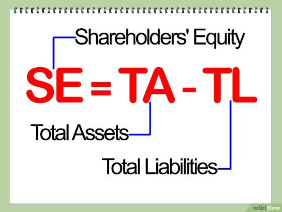 Immagine titolata Calculate Return on Equity (ROE) Step 1