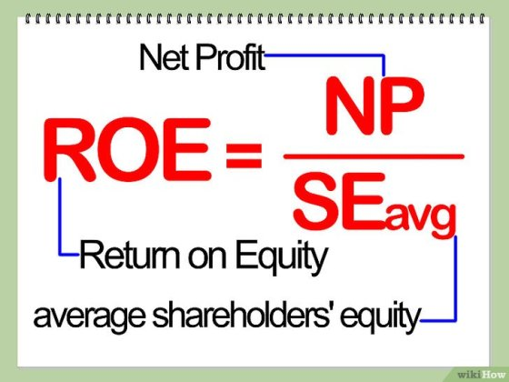 Immagine titolata Calculate Return on Equity (ROE) Step 4