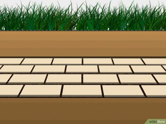 Immagine titolata Grow Grass Between Pavers Step 3