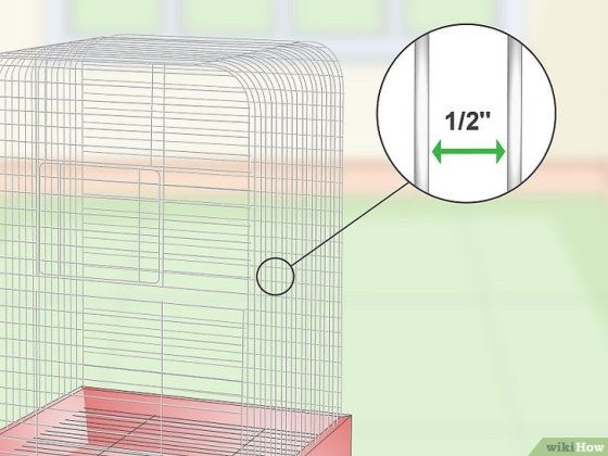 Immagine titolata Set Up a Parrotlet Cage Step 2