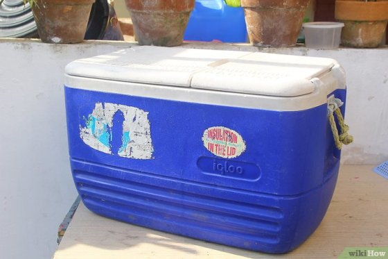 Immagine titolata Keep Ice Cream from Melting in a Cooler Step 11