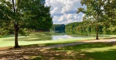 Lake Shamrock in Clayton County