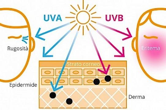 raggi UVA e UVB