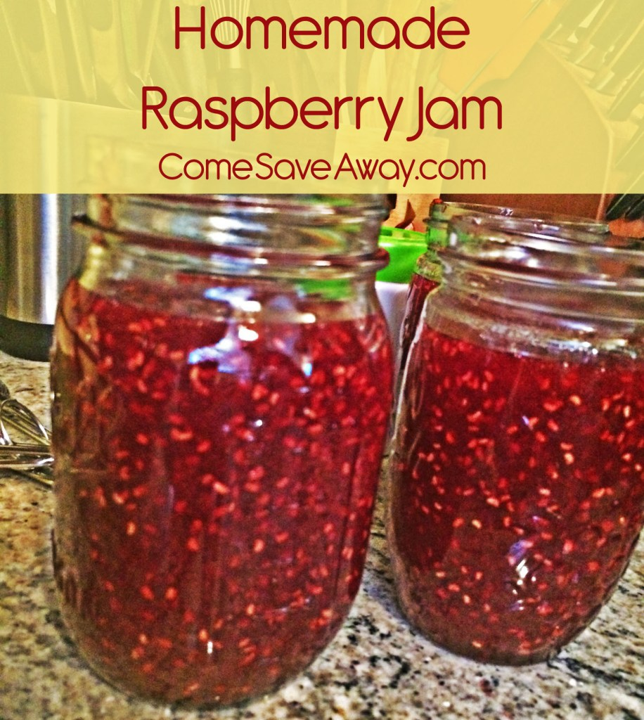 How to make Homemade Jam that is SOO Tasty! From Come Save Away!