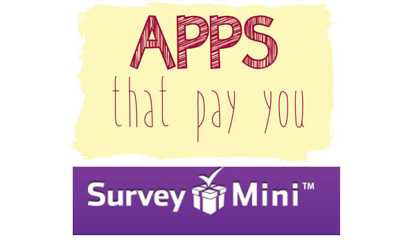 survey mini
