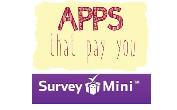 survey mini