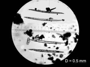 СТРИМЕРГЛАСЫ_Кометы