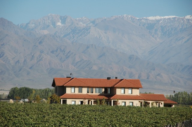 Vineyard with a view: SonVida in Altamira, Uco Valley.