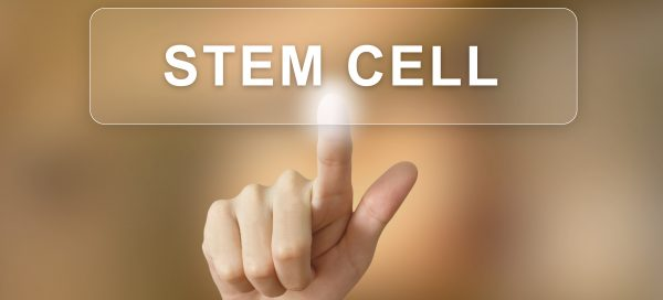 stem cell therapy gainesville