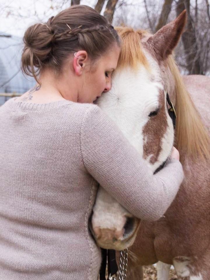 horse loss