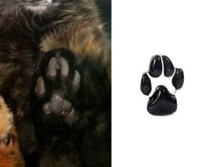 cat paw print pocket stone