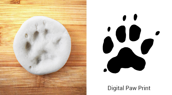 digital paw print created from a paw clay impression