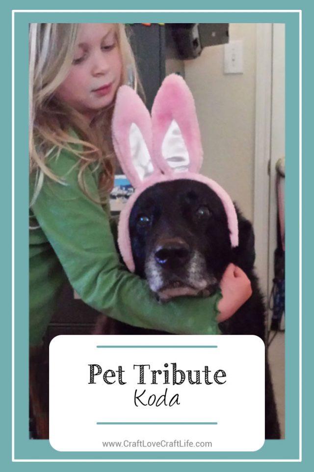 family dog loss
