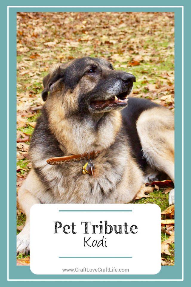 german shepherd dog loss