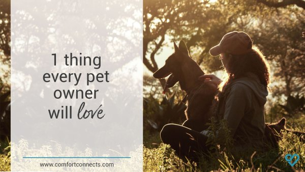 1 thing every pet owner will love