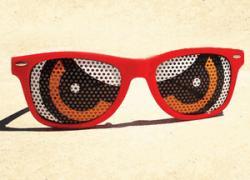 Owlz Sunglasses