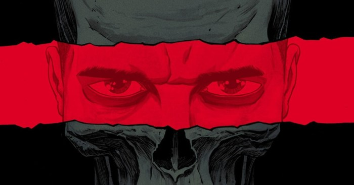 The Punisher by Becky Cloonan