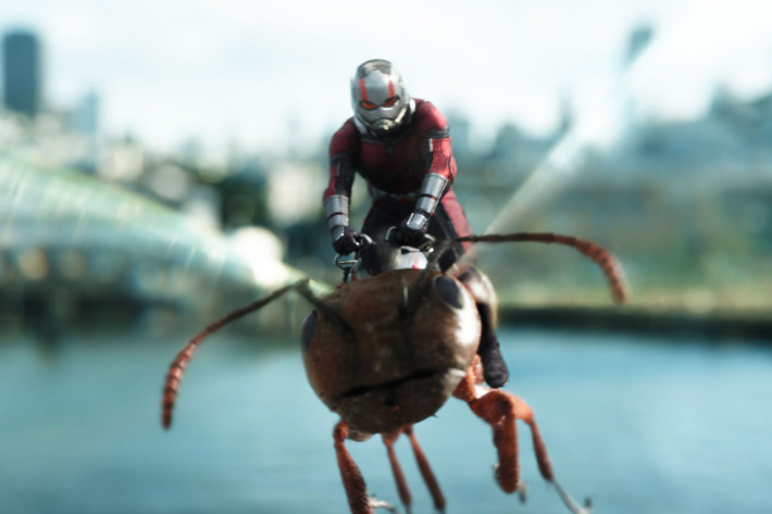 Ulysses S. Gr-ANT rides again