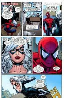 black-and-spiderman-sex