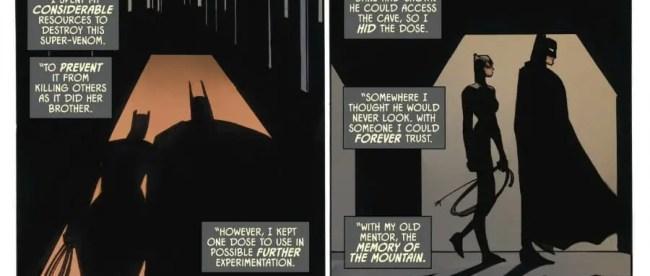 Batman Reveals His Plans To Catwoman