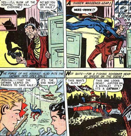Catman court à sa perte...
