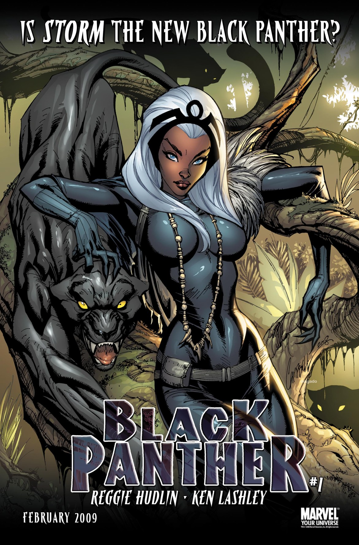 IsStormTheNewBlackPanther Is Storm The New Black Panther?