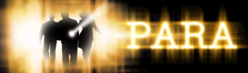 parapagebannergraphic REVIEW: Para