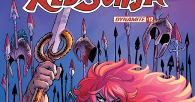 Red Sonja #12 cover by Amanda Conner and Paul Mounts
