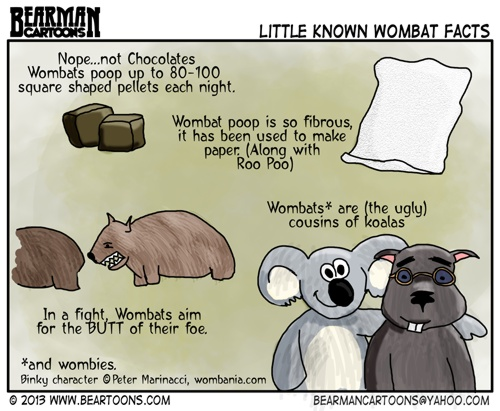 Image result for bearman cartoon wombats