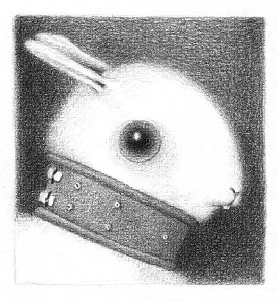 bunny6sm.jpg