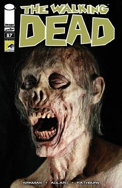 Walking Dead 87_250 wide.jpg
