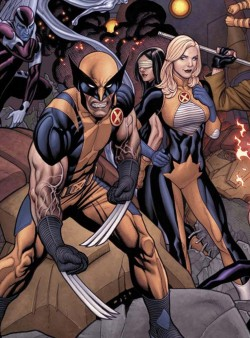 Angry Wolverine backed by team
